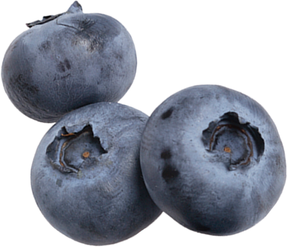 Berry Lovers - Blueberries